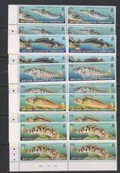 British Antarctic Territory (BAT) 1999 Fishes 5v Bl Of 4 (corner) ** Mnh (39817A) - Brits Antarctisch Territorium  (BAT)