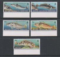 British Antarctic Territory 1999 Fish Of The Southern Ocean 5v (+margin)  ** Mnh (39817C) - Ongebruikt