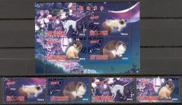 G233 Used CTO 4+S/S Fauna Pet Cat Birman 2013 - Stamps