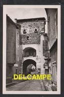DF / 48 LOZÈRE / LE MALZIEU-VILLE / PORTAIL DES ANCIENNES FORTIFICATIONS - Autres Communes