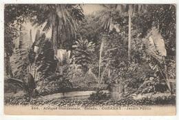 Guinée - CONAKRY - Jardin Public - Fortier 396 - Guinée Française