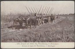Attelages, Scènes Et Types De Macédoine, Salonique, C.1910s - Libraire Francais CPA - Greece