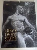 Calendrier Grand Format  30X42, Dieux Stade 2013, Rugby,  Hommes Nus, Dévêtus, 38 Pages Et Modèles, Sans Vison Sexe - Calendars