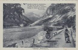 CARTOLINA - POSTCARD - UDINE - CARNIA PITTORESCA - Udine