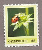Österreich - Personalisierte Marke - Käfer - Siebenpunkt-Marienkäfer (Coccinella Septempunctata) - Insekten