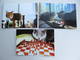 3 PCs Lot Cat Playing Chess   - Schach  - Ajedrez - Echecs - Ajedrez
