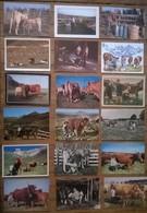 Lot De 18 Cartes Postales VACHES TRAITE PAYSANS /a - Elevage