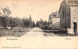 Hertogenwald - Hestreux (animée) - Baelen