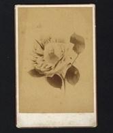 FOTOGRAFIA D.Antonio Pedro Da Costa, 1º BISPO De DAMÃO -1890s Antique Cabinet Photo PHOTOMONTAGE SURREALISM Bishop INDIA - Photos