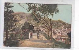 ALGER. CHEMIN D'EL-KATTAR A IDAH EL OUED. CIRCA 1900's.- BLEUP - El-Oued