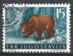 Yugoslavia (Trieste) 1954. Scott #96 (U) Brown Bear, Overprinted STT VUJNA * - 1945-1992 République Fédérative Populaire De Yougoslavie