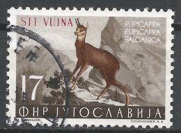 Yugoslavia (Trieste) 1954. Scott #97 (U) Chamois, Overprinted STT VUJNA * - 1945-1992 République Fédérative Populaire De Yougoslavie