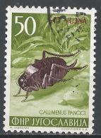 Yugoslavia (Trieste) 1954. Scott #101 (U) Bush Cricket, Insect, Overprinted STT VUJNA * - 1945-1992 République Fédérative Populaire De Yougoslavie