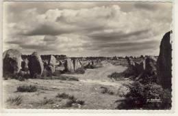 CARNAC MORBIHAN  LES MENHIRS - Dolmen & Menhirs