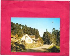 OBERHASLACH - 67 - Maison Forestière Du Nideck - SAL** - - France