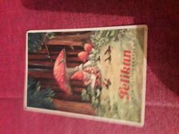 Carte Postale 9x13 Pelikan Tinta Estilografica( Un Nain Dessinant Sous Un Champignon) - Cartes Postales