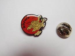 Beau Pin's , Leneveu , Tortue , Turtle - Animales