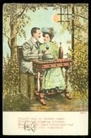 NEDERLAND ANSICHTKAART * NVPH 51 * Gelopen In 1907 Van HAARLEM Naar STEMPEL HOUTRYK POLANEN * FANTASIE (3888e) - Fantasie