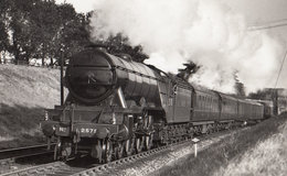 Galopin Derby Horse Winner Named Train 2575 Class 4-6-2 A Photo - Trains