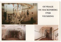 VECKRING -- Ouvrage Du Hackenberg --Ligne Maginot (militaria) -- Multivues ( Tourelle 135,Magasin à Munitions.... ) - France