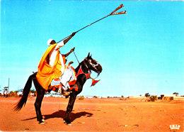 REPUBLIQUE DU NIGER NIAMEY JOUEUR DE TROMPETTE HAOUSSA Superbe CPSM 15X10.5 Bon état Voir Scans - Niger