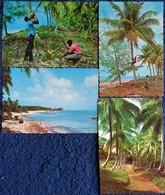 The Tropical Caribbean - 4 Post Card - Postcards