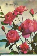Carte Glacée  De  Bonne Fete Avec Un Bouquet De Roses - Fêtes - Voeux