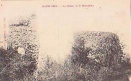 Ain       338        MONTLUEL.Les Ruines De St Barthélémy - Otros Municipios