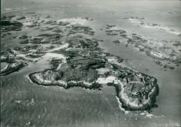 Granville Îles Chausey: Vue Aérienne De L'Ile Principale à Marée Haute  1954 - Unclassified