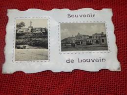 LEUVEN -  LOUVAIN  -  Souvenir De Louvain - Leuven