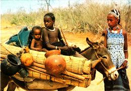 REPUBLIQUE DU NIGER FAMILLE PEULH DE BOSSE BANGOU Superbe CPSM 15X10.5 Bon état Voir Scans - Niger