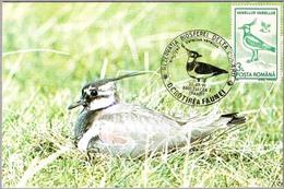 RESERVA DE LA BIOSFERA Delta Dunarii. Vanellus Vanellus. AVEFRIA. Tulcea 1991 - Protección Del Medio Ambiente Y Del Clima