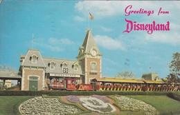 GREETINGS FROM DISNEYLAND. CIRCULEE TO BUENOS AIRES. CIRCA 1977. USA- BLEUP - Disneyland