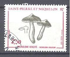 Saint Pierre Et Miquelon: Yvert N° 497°; Champignon - St.Pierre & Miquelon