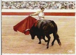 Une Manoletine De Luis Miguel DOMINGUIN - Corridas