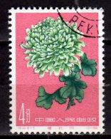 1961 China - Chrysanthemum / Chrysanthemen - 1v Used - Mi 584  (HJ16) - Gebraucht