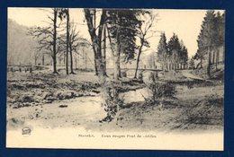 Stavelot. Eaux Rouges. Pont De Châlles. 1923 - Stavelot