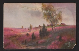 Landscape Probably German - Used 1914 In USA - Staining & Missing Corner - Paintings
