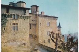 Rhône - CHESSY-les-MINES - Le Château - France
