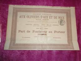 AUX OLIVIERS D'AIX ET DE NICE (1893) - Shareholdings