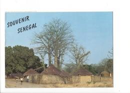 20386 - Village Du Sine-Saloum - Sénégal