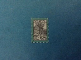 1999 BIELORUSSIA BELARUS FRANCOBOLLO USATO STAMP USED - ORDINARIO 30000 - Bielorussia