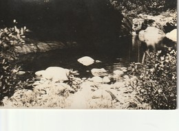 Unidentified  Water's Edge Scene Possibly Vermont RPPC - United States