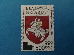 1993 BIELORUSSIA BELARUS FRANCOBOLLO USATO STAMP USED - Giochi Olimpici Lillehammer - Bielorussia