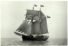 TRAINING SHIP LILLA DAN    +- 12 * 8.5 CM Voilier - Velero Sailboat - Barcos