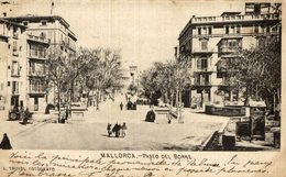 MALLORCA PASEO DEL BORNE TRUYOL - Árboles