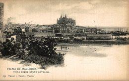 PALMA DE MALLORCA VISTA DESDE SANTA CATALINA - Árboles
