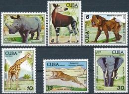 Cuba  Wild - Wild