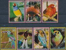 Equtoriaal Guinea  Vogels - Zangvogels