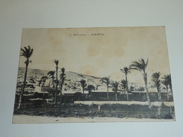 PALESTINE CAIFFA - DES PALMIERS - Etranger Palestine (AC) - Palestine